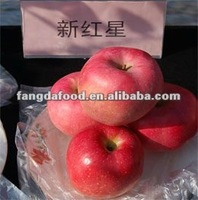 2014 Fresh Red Star Apple /Fresh Fruits