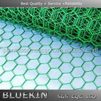 hot sale lowes hexagonal netting bird wire mesh with high quality
