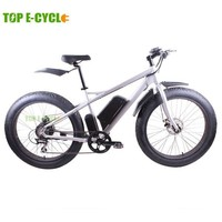 TOP E-cycle newest electric snow bike,electric beach bike