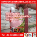 Professional Manufacturer 100% water soluble NPK Fertilizer 12-12-36(NOP) FACTORY
