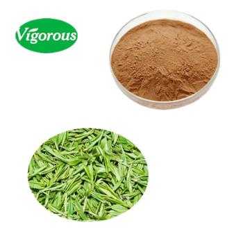 enhance Immunity beverage 20%Polyphenols instant green tea extract powder
