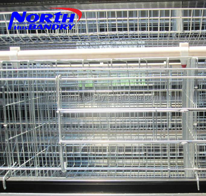 China factory high quality chicken laying cage/full-automation poultry battery cages/Auto Feeding System