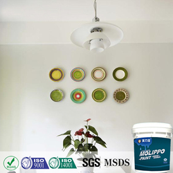 Anti-microbial Decoration Wall Coating
