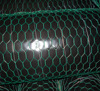 PVC coated green hexagonal chicken wire mesh /wire fence for feeding chicken