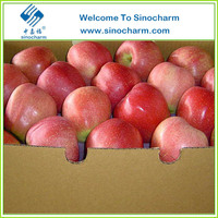Fresh Fruit Importers Red Fuji Fresh Apple
