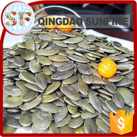 Low Price bulk raw gws pumpkin seeds kernel