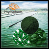 /product-detail/natrual-protein-organic-chlorella-powder-tablet-capsule-60504431033.html