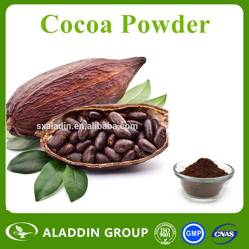 Wholesale High Quality Natural Organic Cocoa Powder