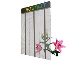 Energy-saving transparent full color solar power advertising display for advertising behind window screen