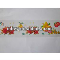 hot film,eco-friendly heat transfer printing film,vivid color,100% non-toxic