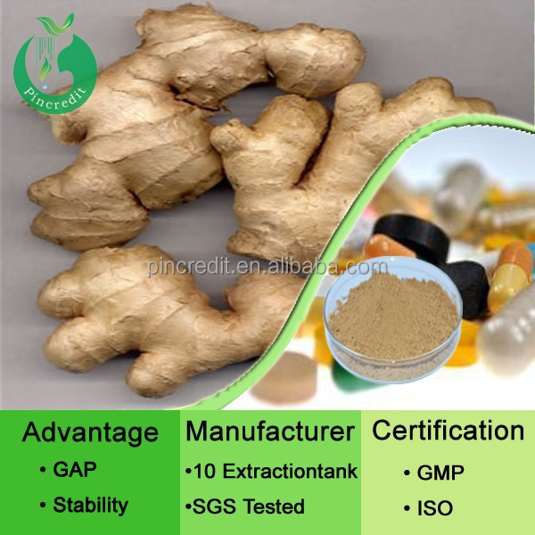 Ginger Extract Gingerol/Black Ginger Extract/Pure Ginger Extract