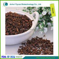 High Quality Dry Clove and Flos Caryophylli