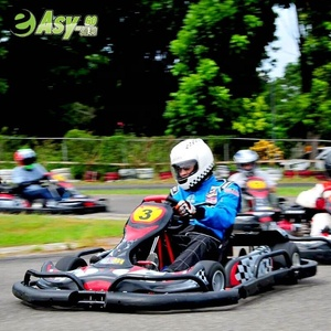 2017 newest 200cc/270cc 2 seats racing pedal cheap gas powered go karts for lovers,parents with CE certificate hot on sale