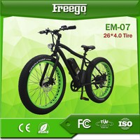 Freego New style Cheap Chinese foloding 2 wheels electric bike/bicycle/motorbike
