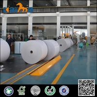 PE Coated Paper for Paper Cup Raw Material