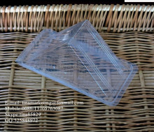 Disposable Triangle Transparent Hinged Sandwich Box Plastic Cake Container