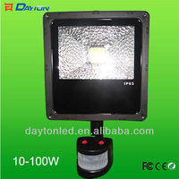 Bridgelux COB Led Pir Flood Light