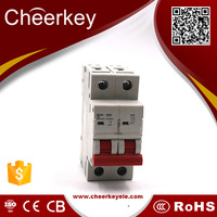 2p Electric Mini Circuit Breaker Mcb
