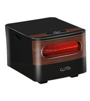 2 in 1 small electric heater with remote control