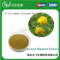Acacia Rigidula Powder,Acacia Rigidula Extract Powder