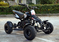 HOT 49CC 2 STROKE MINI QUAD ATV FOR KIDS
