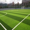 Hot Sell Ecnomic Chinese Artificial Grass