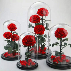 High quality display glass dome wholesale glass dome with wooden base