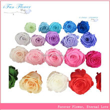 Low price best sell rose head wedding car