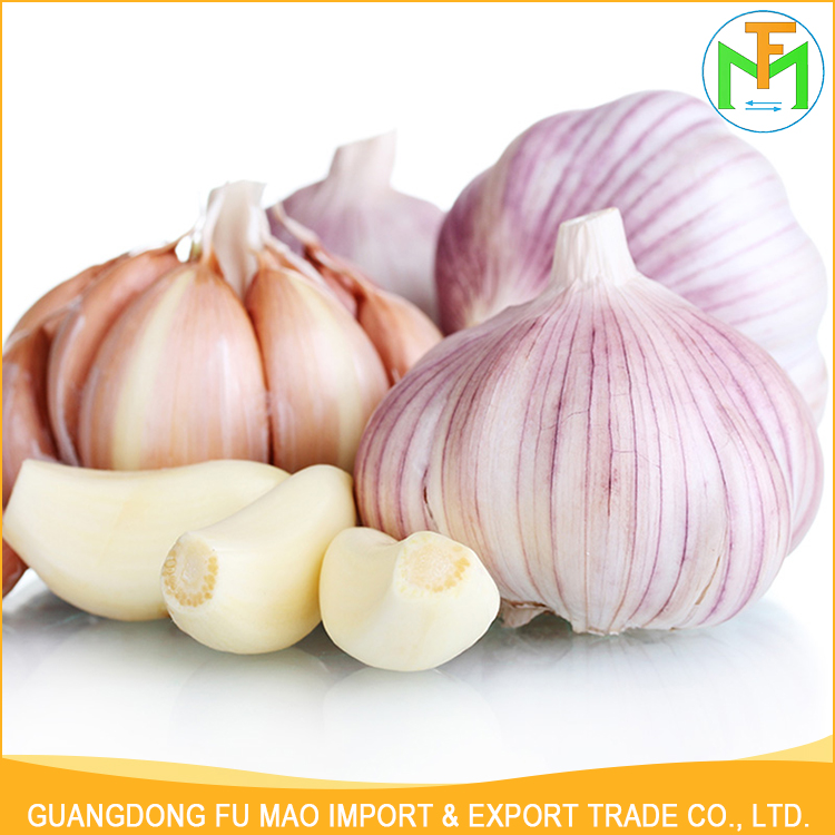 Best Quality Shandong Allium Sativum Good Farmer Healthy Organic Red Garlic