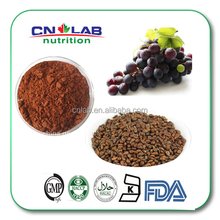 GMP Factory grape seed extract powder /80% grape polyphenols/95% OPC
