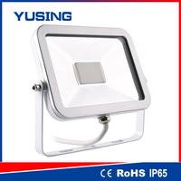 Professional normal version flood light security camera