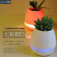 Free Shipping New Design Creative Pots
