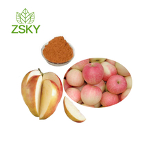 GMP Certified Manufacturer Supply Apple Peel Extract