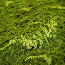 Latest arrival custom design fern leaves artificial turf grass sod