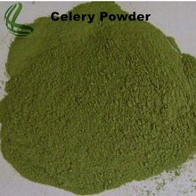 Good price celery juice concentrate powder with good quality