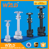 WZLD Stainless Steel Industrial GB/T13927; JB/T9092 Jacket Oil Pipe Cryogentic Gate Valve