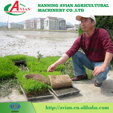 High Quality 6 Rows Rice Seed Planting Machine / Rice Planter with low price