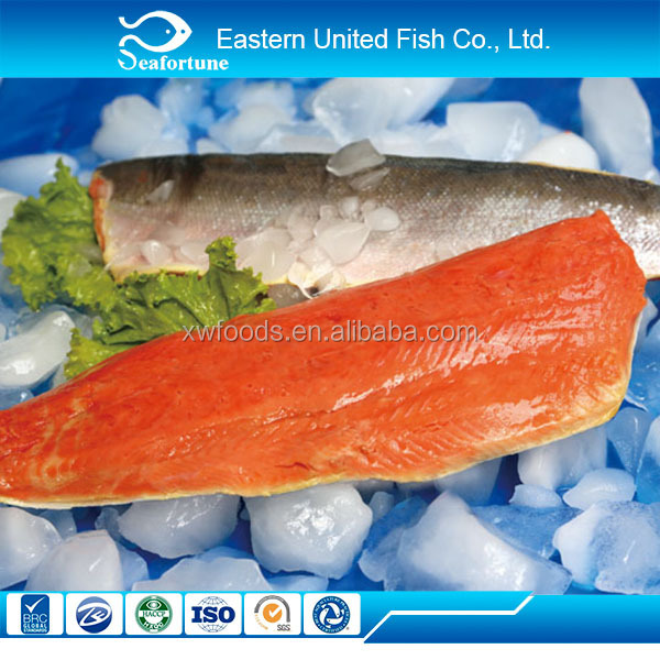 chinese sea export fresh salmon fillets