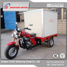 New Big Power Pro Three Wheel Trike Scooter/Tricyc/Motorcycle With Cargo