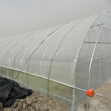 good quality and cheap agriculture plastic film for greenhouse 3-5 years