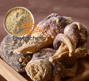 Factory OEM Natural Maca Root Extract/Tablet/Capsules/Coffee