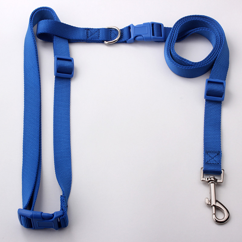 New design pet products handsfree nylon running dog leash for walking