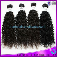 Fabeisheng Wholesale raw unprocessed virgin brazilian kinky curly hair 100% virgin kinky curly braiding hair