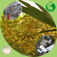 Fruit Powder Juice Powder Saw Palmetto Fruit Extract Powder
