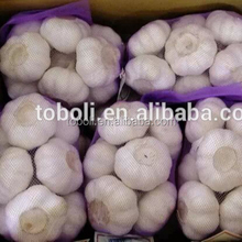 China garlic in usa
