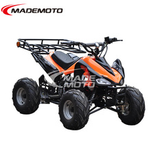 CE Approval Factory Price /Chinese Adult 800W Electric ATV.