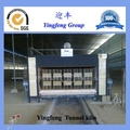 Made in China good quality microwave tunnel dryer for clay brick production line