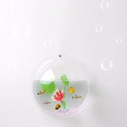 2017 Latest Creative Design Home Decor Acrylic Transparent Wall Mounted Bowl Plant Hanging Vase Fish Tank Aquarium