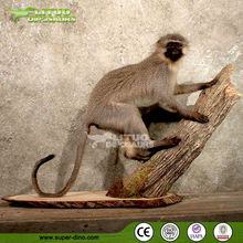 Animal Display Animatronic Monkey