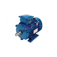 Ever Victory motor TOPS Y Y2 YC YCL Series AC electric motor single/three phase
